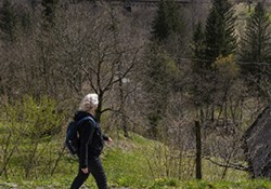 juliana-trail-nw_hiking